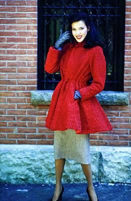 Photograph - Dalma In Fur by Douglas Hopkins