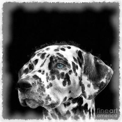 Digital Art - Dalmatian Dog Watercolor by Edward Fielding
