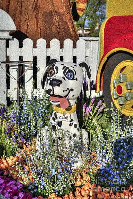 Photograph - Dalmatian Firehouse Dog by David Zanzinger
