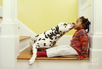 Photograph - Dalmatian Kissing Girl by Margaret Miller