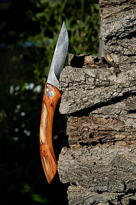 Photograph - Damascene Steel Folding Knife by Jean Gill