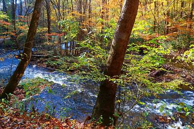 Photograph - Dan River Bend by Kathryn Meyer