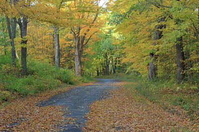 Photograph - Dana Common Road In Autumn Quabbin Reservoir by John Burk