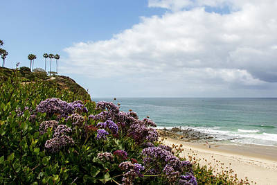 Photograph - Dana Point by Jean Haynes
