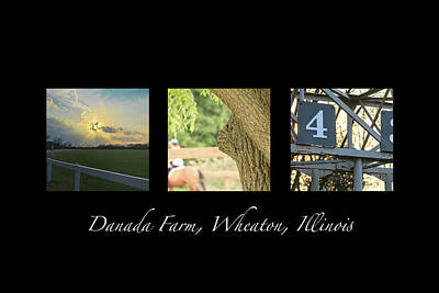 Photograph - Danada Farm Racing Triptych by Joni Eskridge