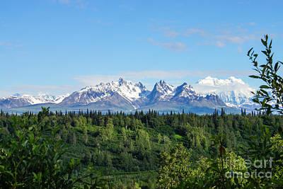 Photograph - Danali Alaskan Range by Jennifer White