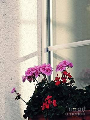 Photograph - Dana's Window by Sarah Loft