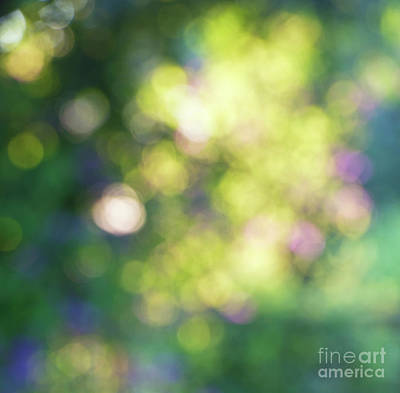 Dance Of Dappled Light Print by Tim Gainey