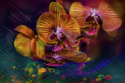 Photograph - Dance Of The Orchids by Patricia Dennis