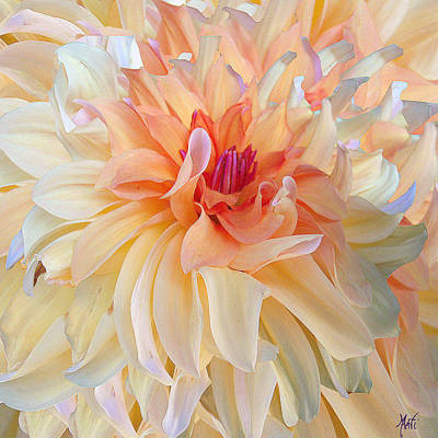 Flora Mixed Media - Dancing Dahlia by Michele Avanti