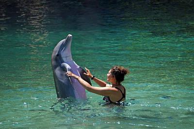 Photograph - Dancing Dolphin by Pamela Walton