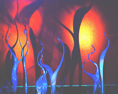 Photograph - Dancing Glass Shadows by Walter E Koopmann
