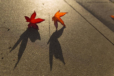 Photograph - Dancing Leaves by Lora Lee Chapman