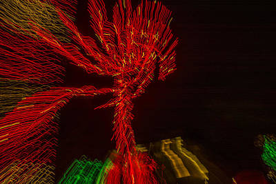 Observer Photograph - Dancing Lights 6 - Palm Tree by Penny Lisowski