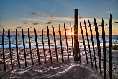 Photograph - Dancing On The Sand Dunes by Debra and Dave Vanderlaan
