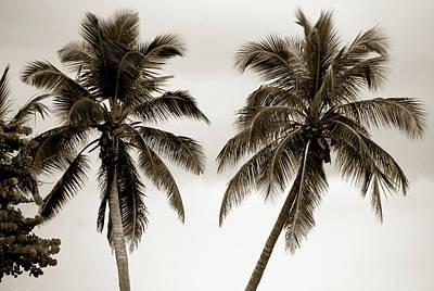 Dancing Palms Art Print by Susanne Van Hulst
