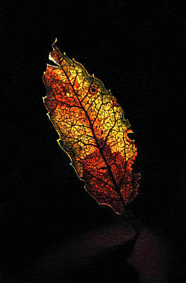 Mixed Media - Dancing Stained Glass Leaf by Rebecca Giles