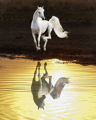 Dancing With Myself Art Print by Ron  McGinnis