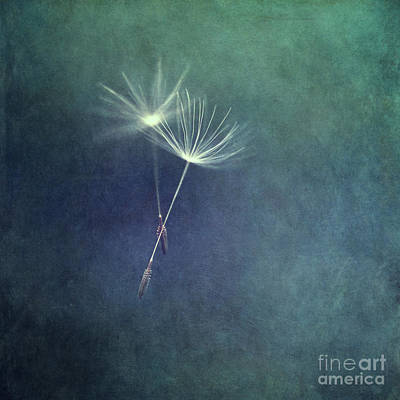 Dancing With The Wind Art Print by Priska Wettstein
