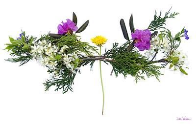 Photograph - Dandelion Balancing Act by Lise Winne