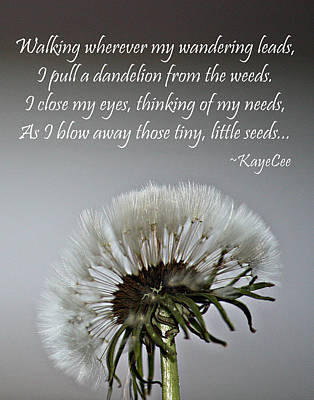 Photograph - Dandelion Dreams- Fine Art And Poetry by KayeCee Spain