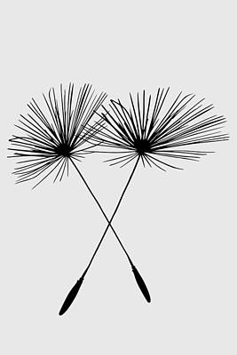 Drawing - Dandelion Duo  by David Dehner
