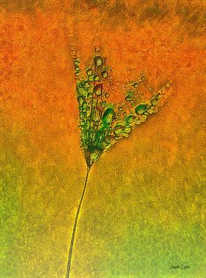 Condensation Painting - Dandelion Flower - Pa by Leonardo Digenio