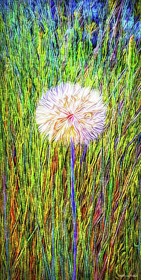Digital Art - Dandelion In Glory by Joel Bruce Wallach