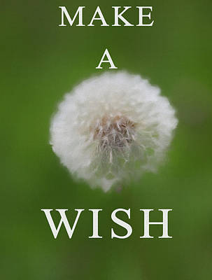 Mixed Media - Dandelion Make A Wish by Dan Sproul