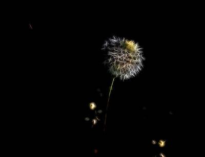 Digital Art - Dandelion Night by Aliceann Carlton