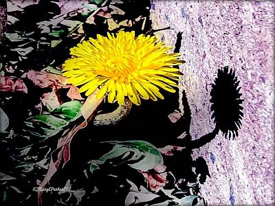 Photograph -  Dandelion Season  by MaryLee Parker
