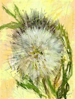 Drawing - Dandelion Sunshower by Desline Vitto