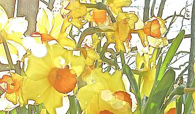 Photograph - Dandy Buttercups by Gwendolyn Christopher