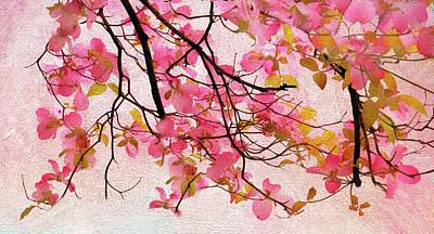 Dogwood Blossom Photograph - Dangling Dogwood by Jessica Jenney