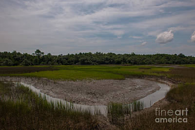 Photograph - Daniel Island Marsh by Dale Powell