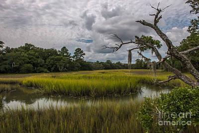 Photograph - Daniel Island Salt Marsh by Dale Powell