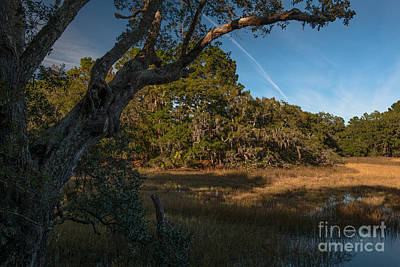 Photograph - Daniel Island Salt Marsh View by Dale Powell