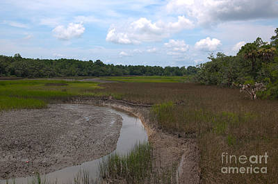 Photograph - Daniel Island Southern Marsh by Dale Powell