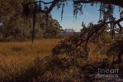 Photograph - Daniel Island View Through The Spanish Moss by Dale Powell