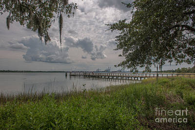 Photograph - Daniel Island Waterfront by Dale Powell