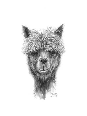 Drawing - Daniel by K Llamas