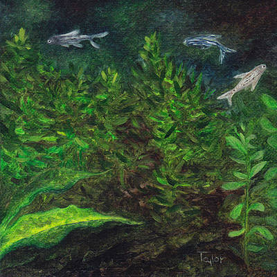 Painting - Danios by FT McKinstry