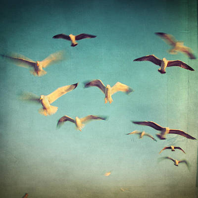 Photograph - Dans Avec Les Oiseaux by Taylan Apukovska