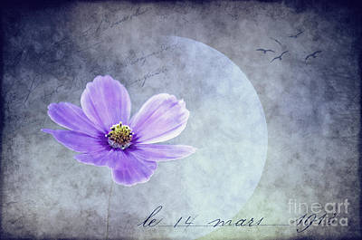Brilliant Mixed Media - Dans L'amour Pour Vous ... II Bleu by Angela Doelling AD DESIGN Photo and PhotoArt