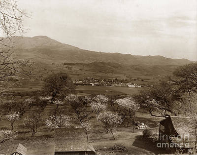 Photograph - Danville California Circa 1915 by California Views Mr Pat Hathaway Archives