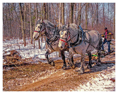 Photograph - Dapple Loggers by Trey Foerster