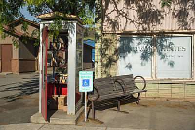 Photograph - Dappled Little Library by Tom Cochran