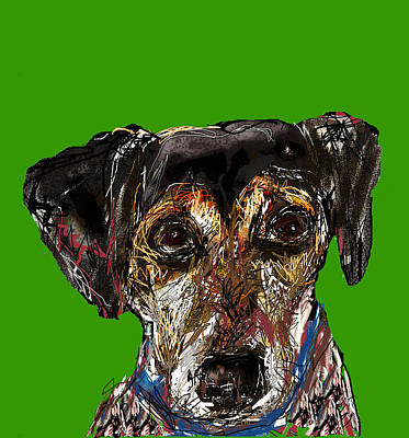 Digital Art - Darby by Joyce Goldin