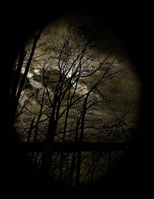 Photograph - Dark And Stormy Night by Gwendolyn Christopher