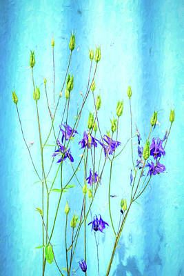 Photograph - Dark Blue Delphinium Soft Oil Style by John Williams